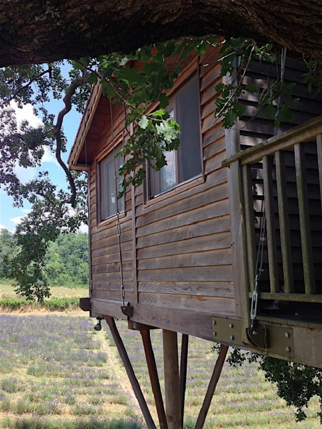 La Piantata Tree House B & B 2