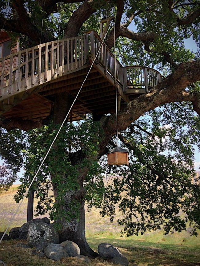 La Piantata Tree House B & B 3