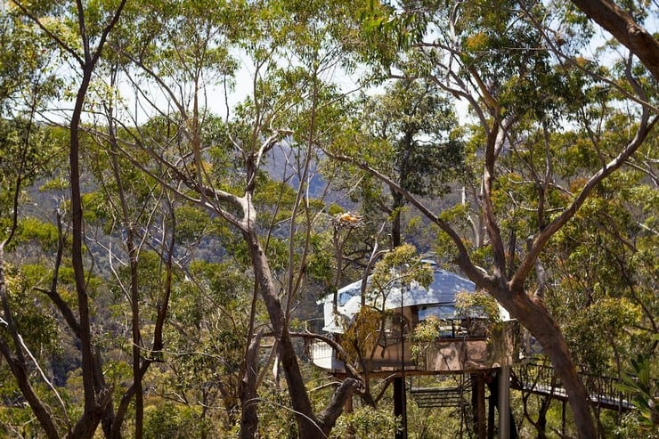 treehouse-blue-mountains-8