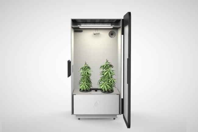 Leaf Cannabis Growing System 2