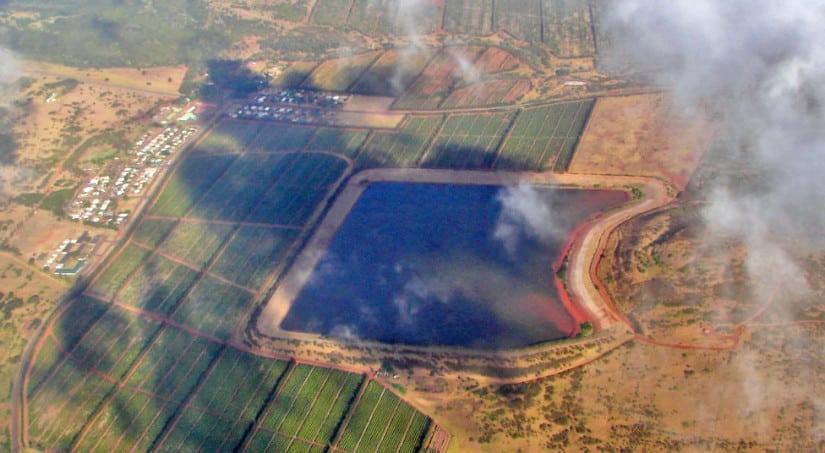 Moloka'i Coffee plantation from the air