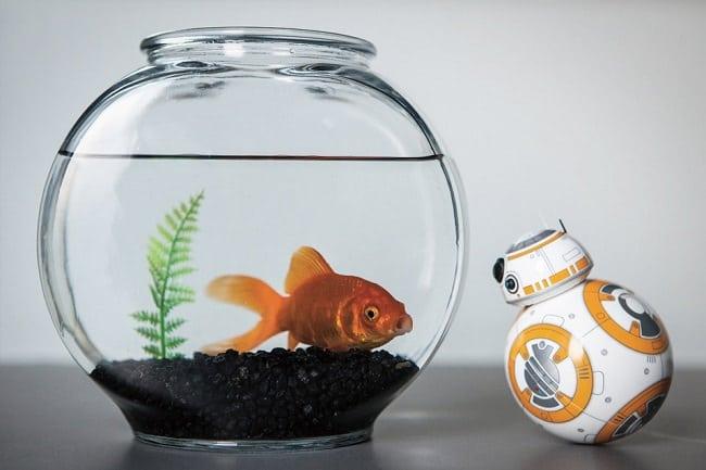 Sphero BB-8 Droid 7