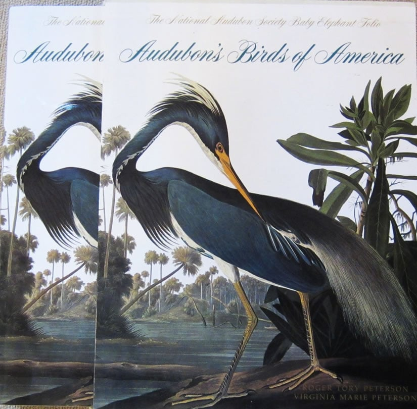 Birds of America John James Audubon Cover