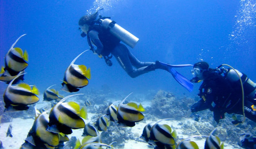 Scuba Diving Club Med Finolhu Luxury Resort