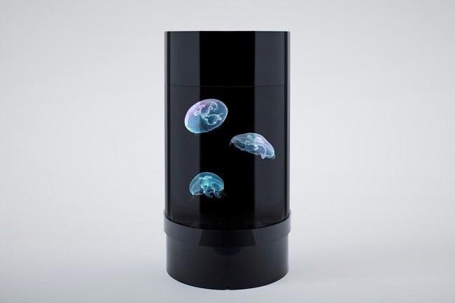 Jellyfish Cylinder Nano Aquarium 4