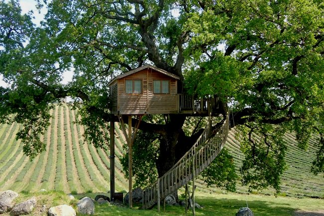 La Piantata Tree House B & B 1