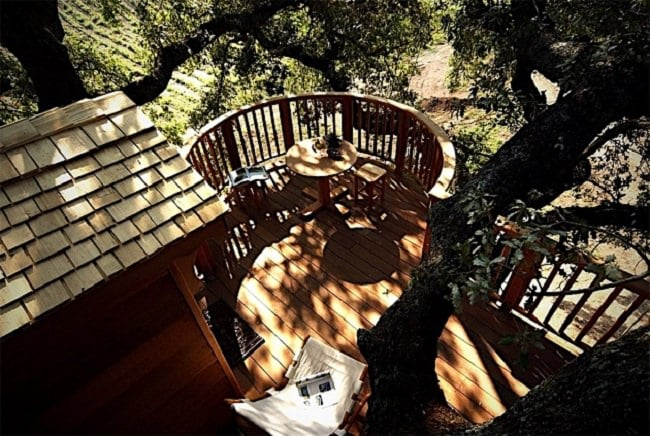 La Piantata Tree House B & B 4