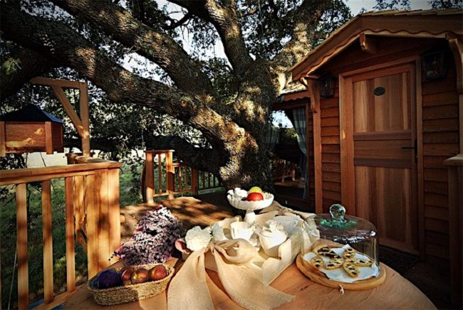 La Piantata Tree House B & B 5