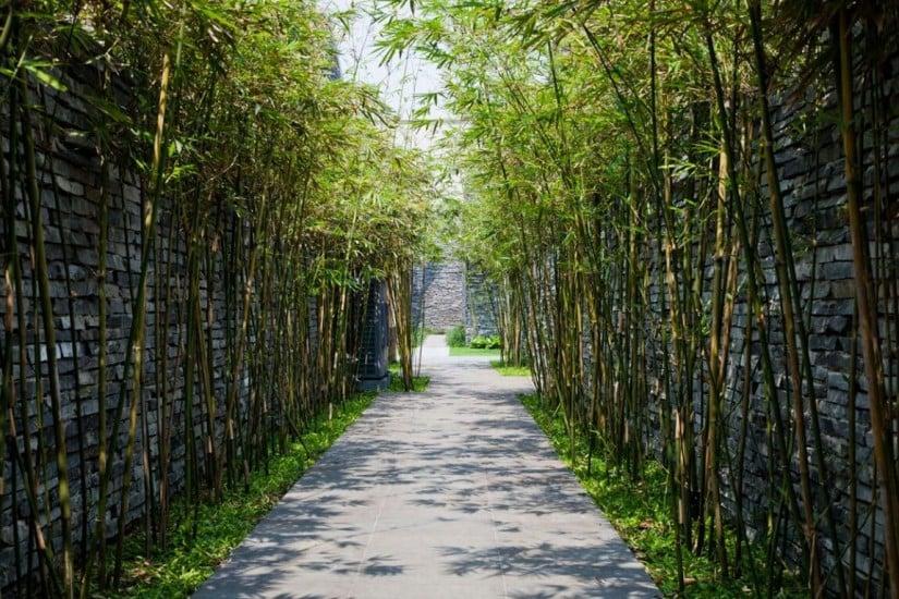 Naman Retreat Resort, Bamboo