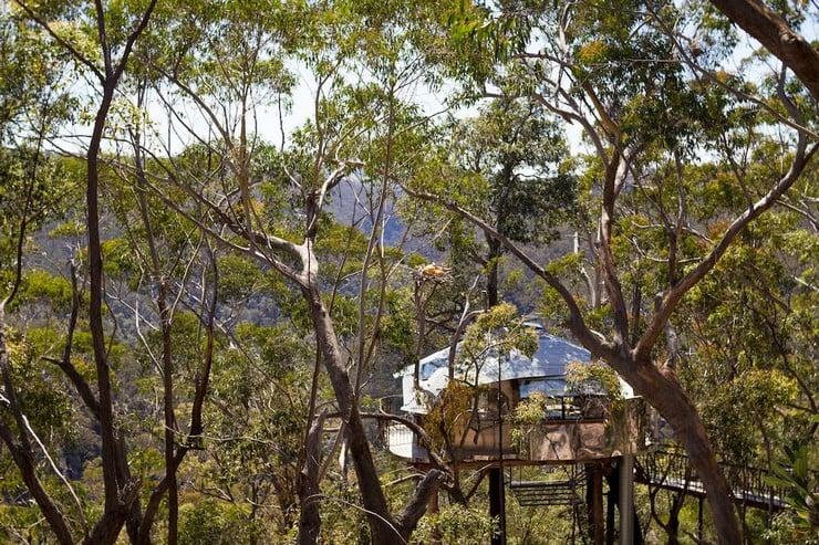 treehouse-blue-mountains-8