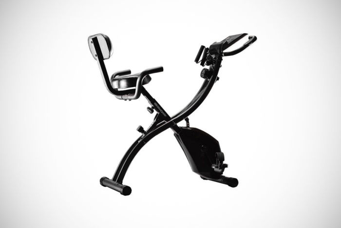 BulbHead Recumbent Exercise Bike